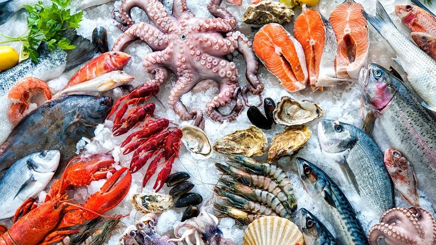 غذاهای حاوی ماهی و میگو